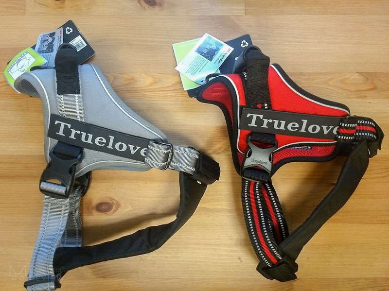 Truelove TLH5753 Harness Review | Dog Gear Review