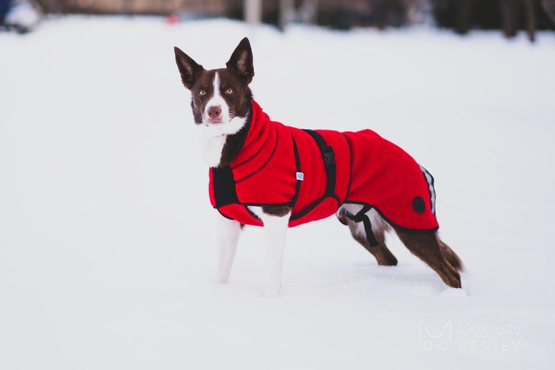 Canelana Lana Wool Coat Review | Dog Gear Review