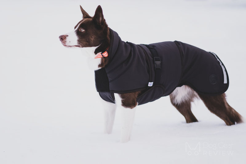 Canelana Thermo Coat Review | Dog Gear Review