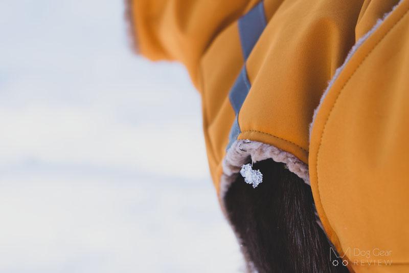 Csinieb Premium Comfort Coat Review   Dog Gear Review