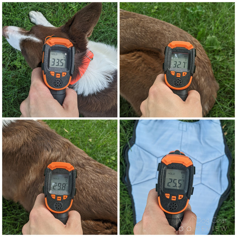 EQDOG Cool Dog Vest Review   Dog Gear Review