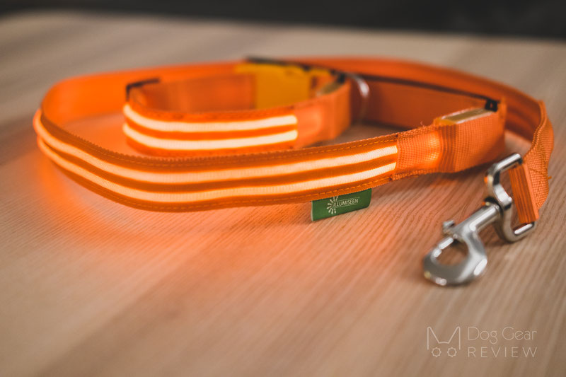 Illumiseen LED Collar, Necklace and Leash Review | Dog Gear Review