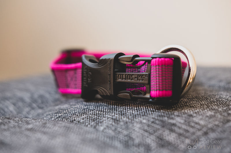 Julius-K9 Color & Gray® Leash and Collar Reviews | Dog Gear Review