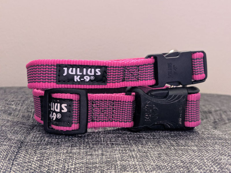 Julius-K9 Color & Gray® Leash and Collar Review | Dog Gear Review