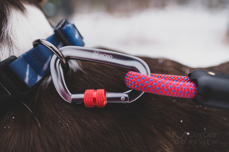 NOBO Pets Stink-Proof Collar and Rope Leash Review | Dog Gear Review