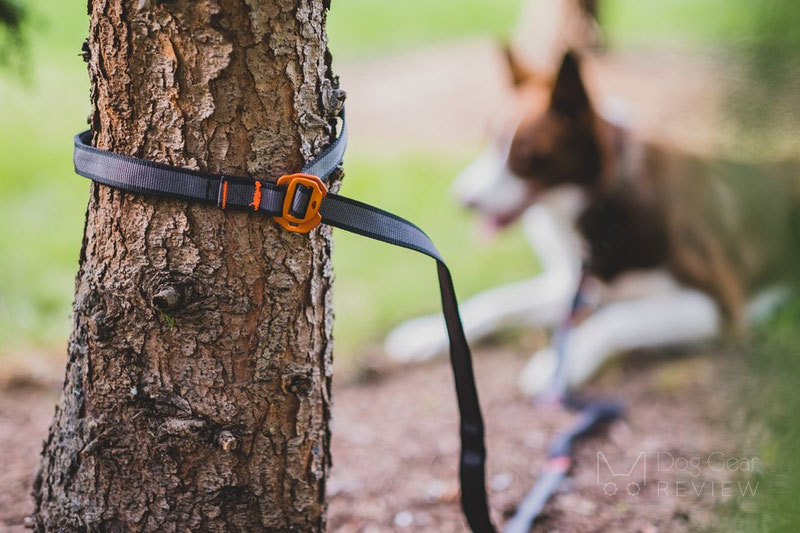 Non-stop Dogwear Touring Bungee Adjustable Leash Review | Dog Gear Review