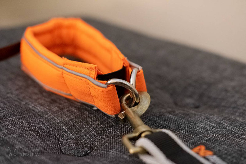 Non-stop Dogwear Bungee Leash Pro & Safe Collar Review | Dog Gear Review