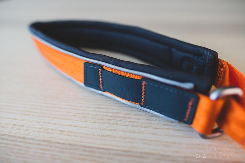 Non-stop Dogwear Cruise Collar Review | Dog Gear Review
