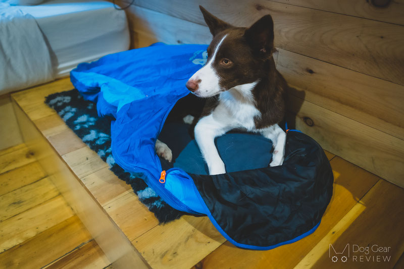Non-stop Dogwear Ly Sleeping Bag Review | Dog Gear Review