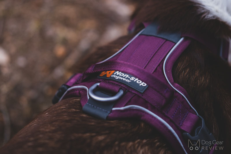 Non-stop Dogwear Ramble Harness Review | Dog Gear Review