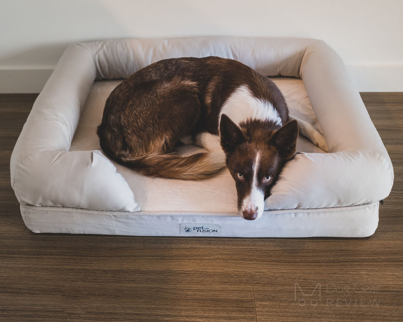 Petfusion Ultimate Dog Lounge Review | Dog Gear Review