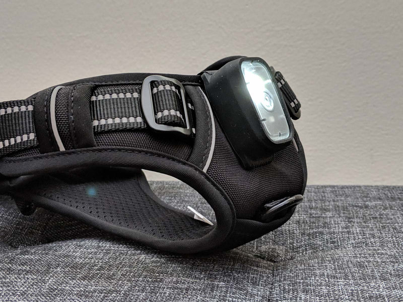 Rabbitgoo Harness with a Built-In LED Light - Review | Dog Gear Review