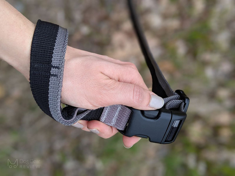 Truelove TLL2271 Bungee Leash Review | Dog Gear Review