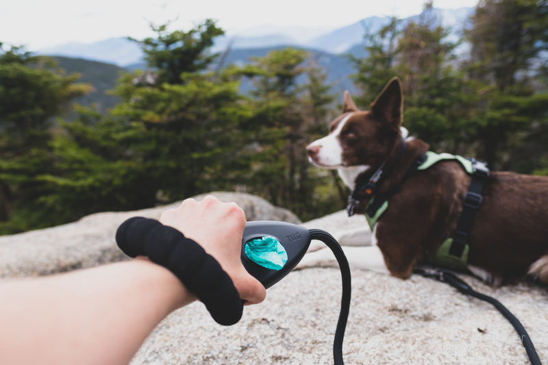 TUG Oval™ Rope Leash Review | Dog Gear Review