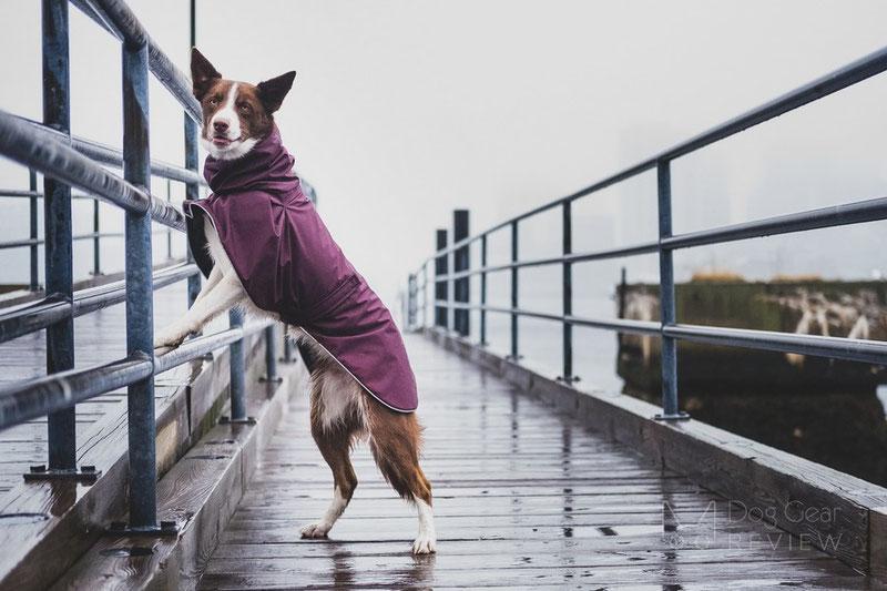 Voyagers K9 Apparel Rain Coat Review | Dog Gear Review